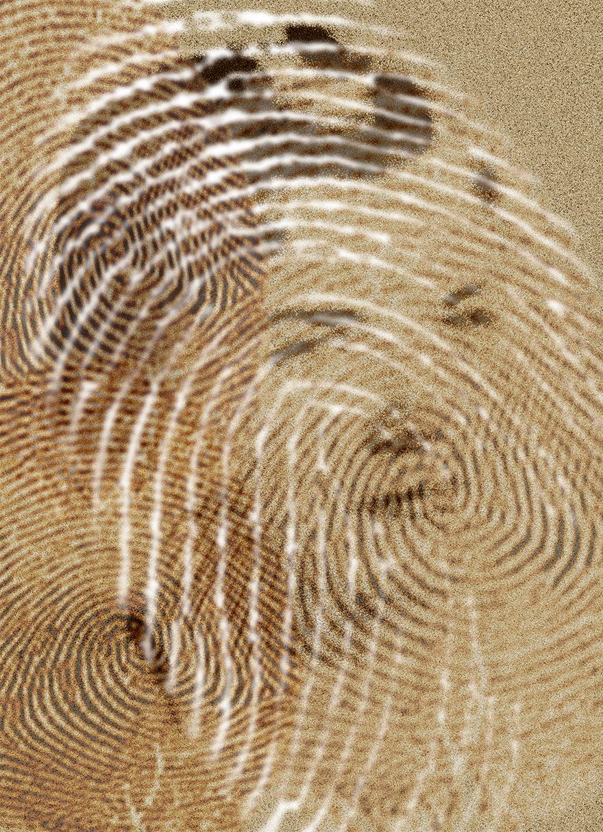 rahel_mueller_fingerprints2010_(08).JPG