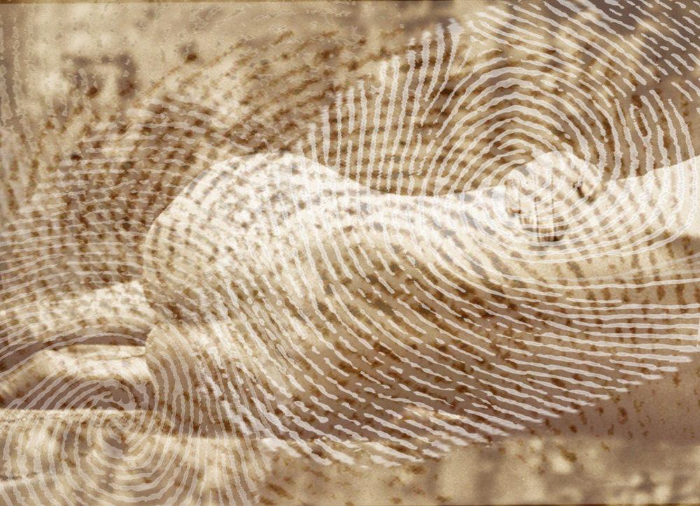 rahel_mueller_fingerprints2010_(09).JPG