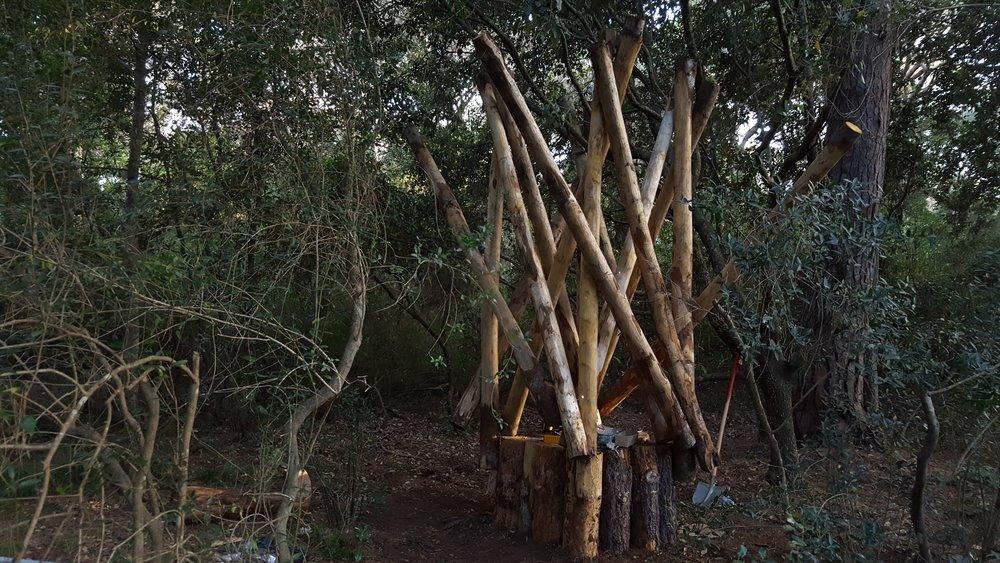 Luigi Greco Architetto - La Casa della Cicala - art in nature - Ambienta 2016 - Roccamare - Castiglione della Pescaia - arte naturale 5.jpg