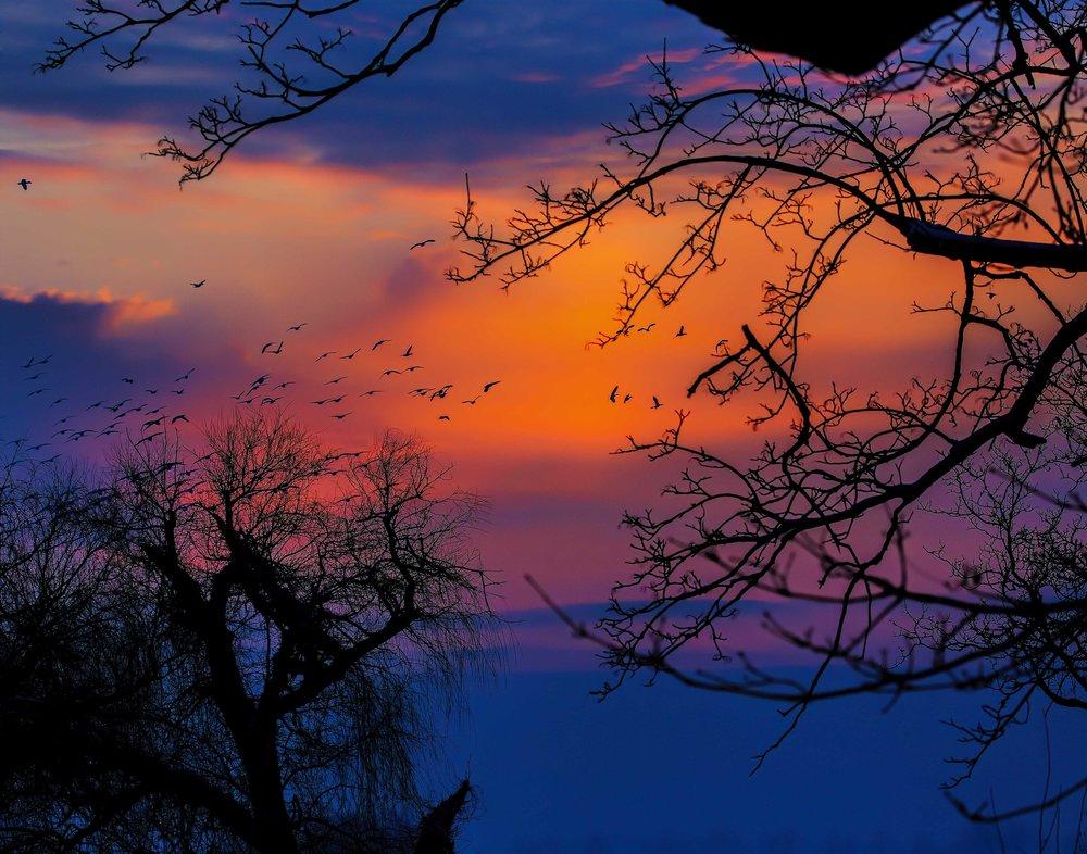 Middle_Creek_sunrise