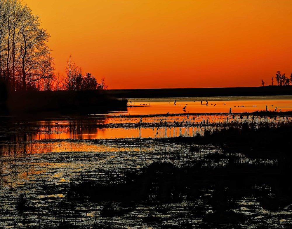 Sunrise_ Bombay_Hook