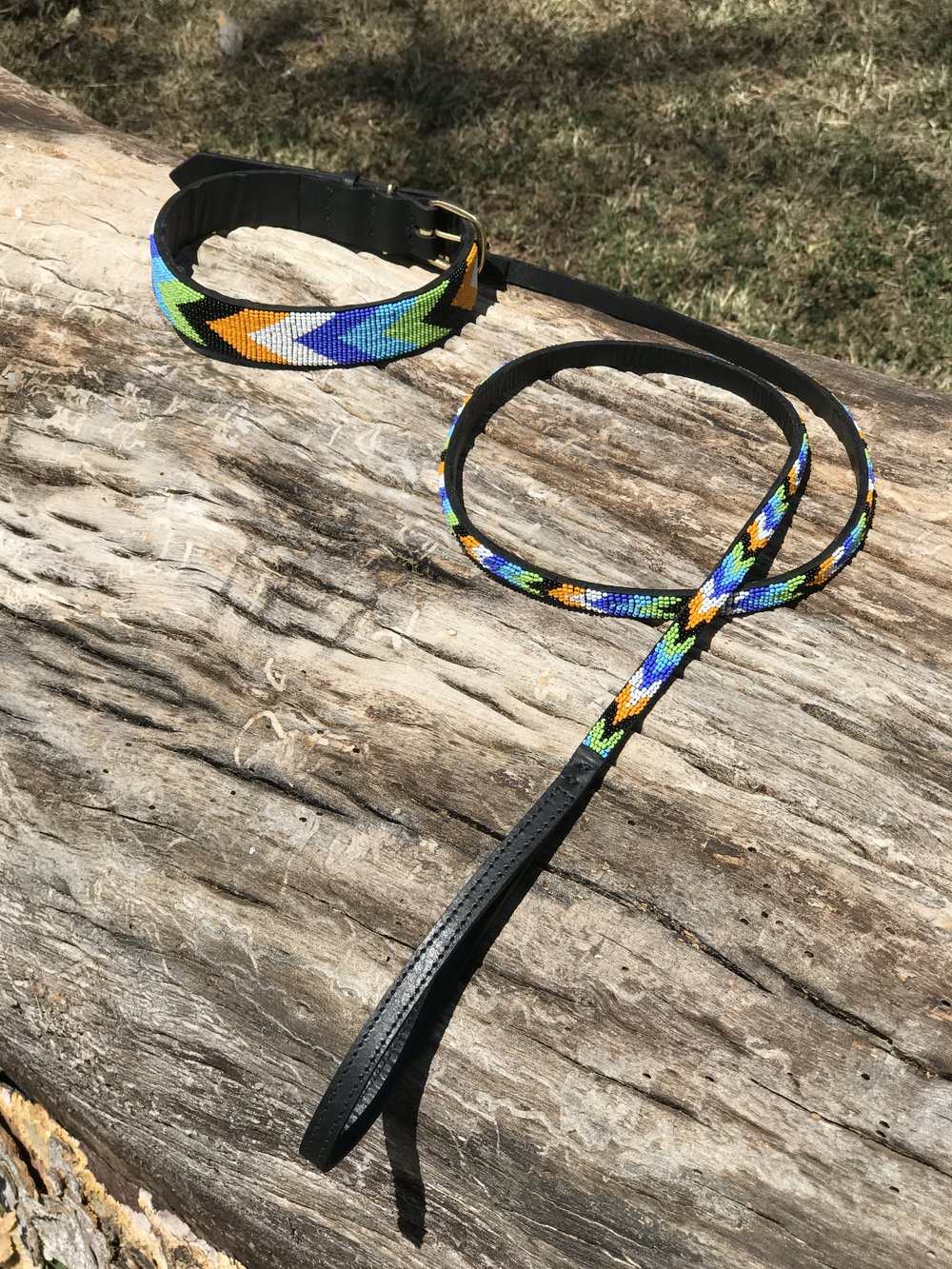 Matchingcollar&leash.JPG