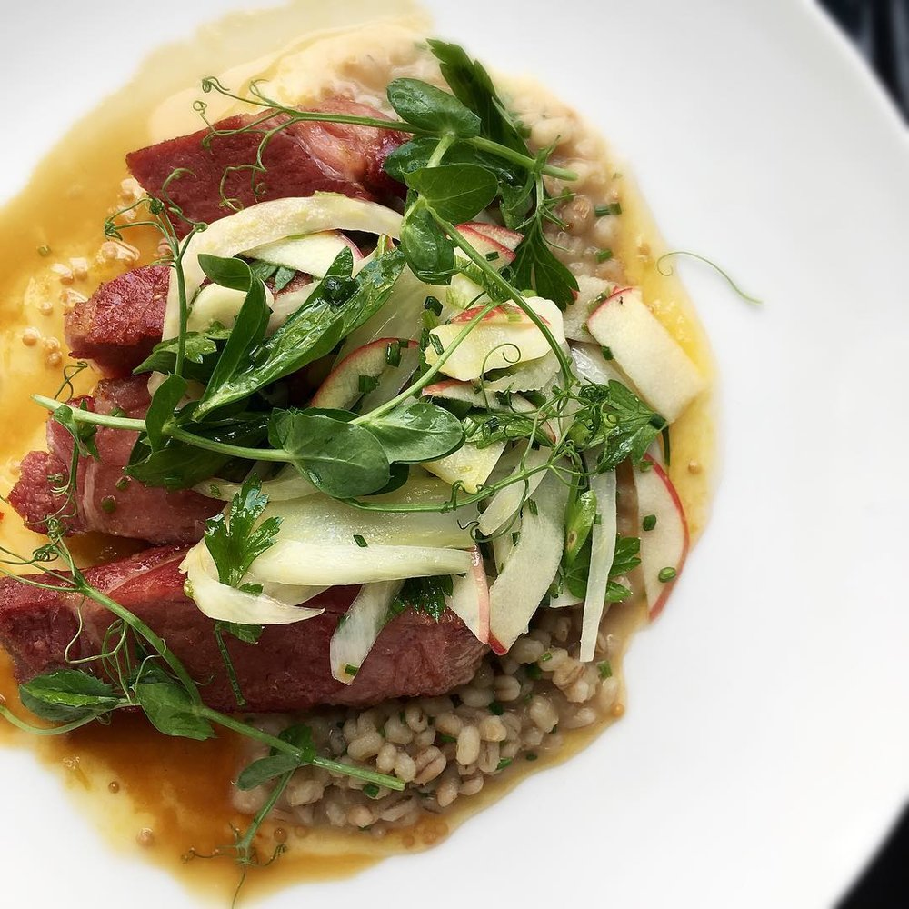 Aldine's entree for Restaurant Week - pork coppa with barley risotto, fennel, & plum mostarda