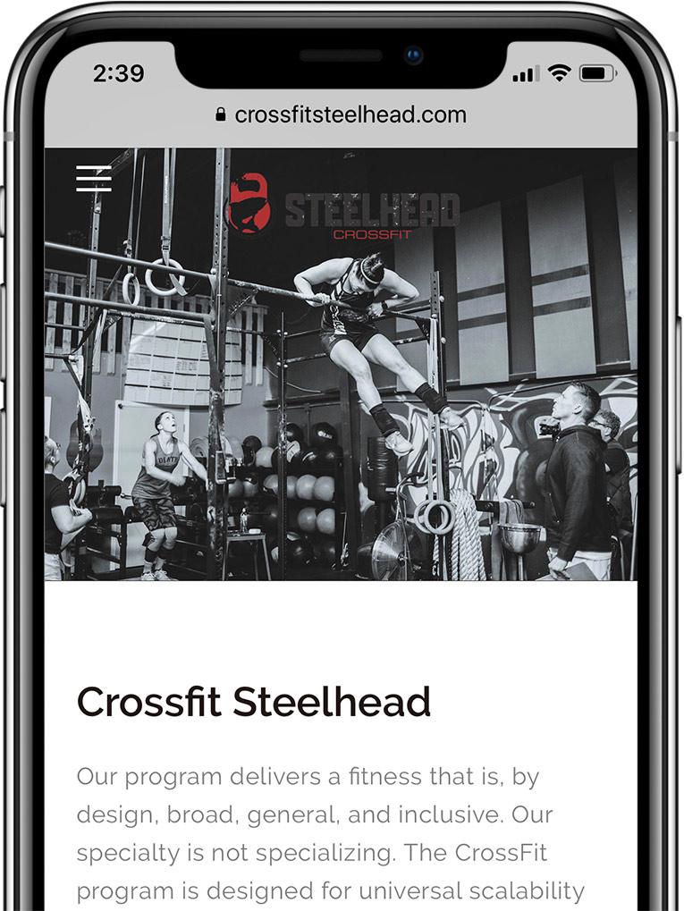 Steelhead-xfit-mockup-small.jpg