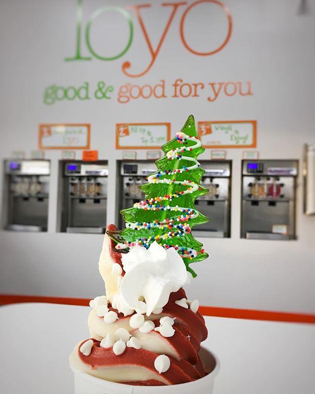The weather outside is frightful, but inside it's so delightful... 🍦🎄 . . .  #localyogurt #frozenyogurt #durhameats #christmastree #christmas #holidays #ncfoodfinds
