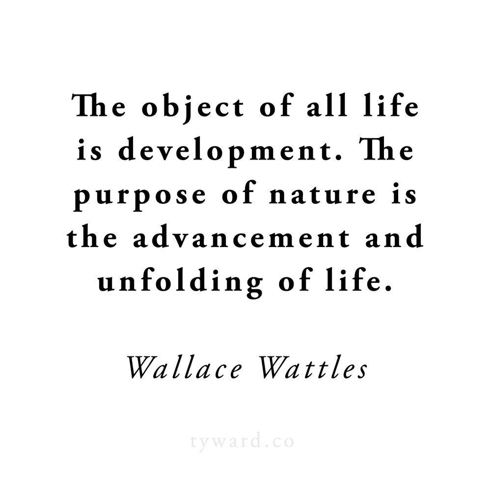 wattles-advancement.jpg