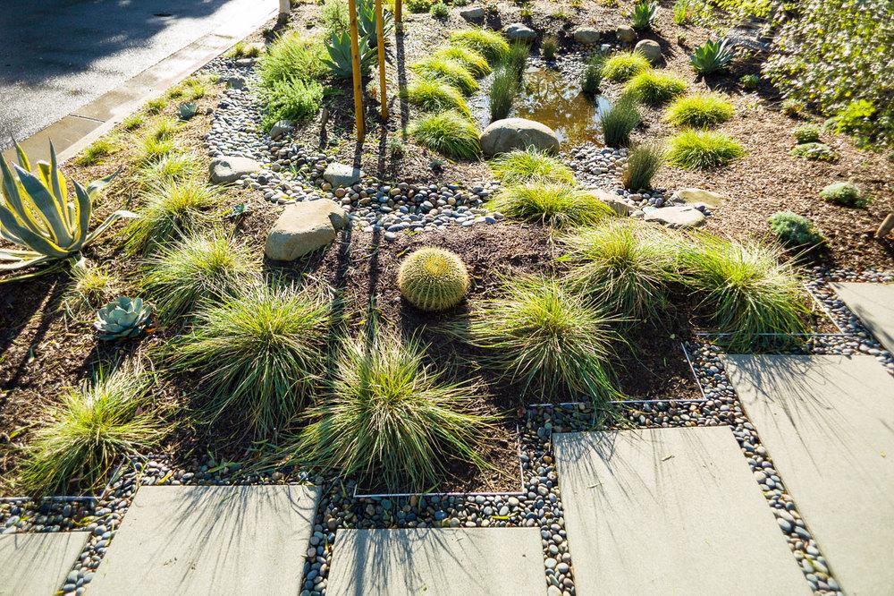 garden-9-palms-2016-j.jpg