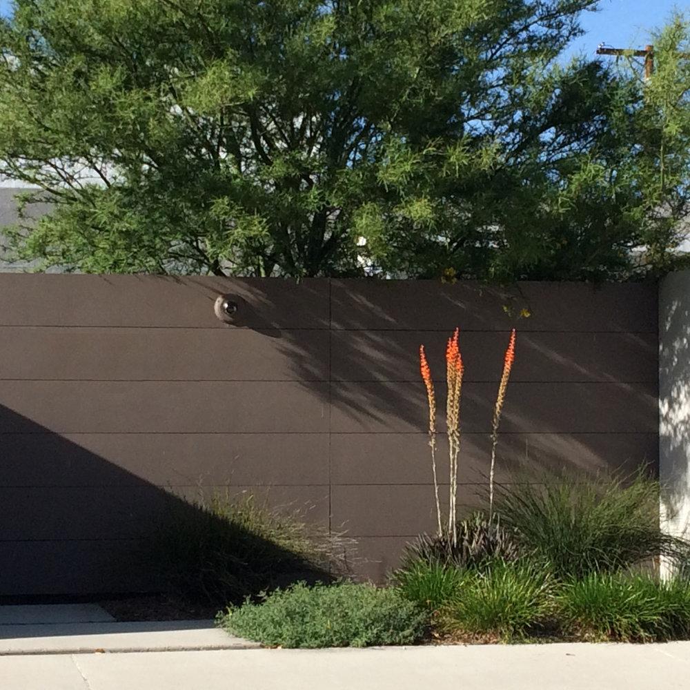 Davidson fence.JPG