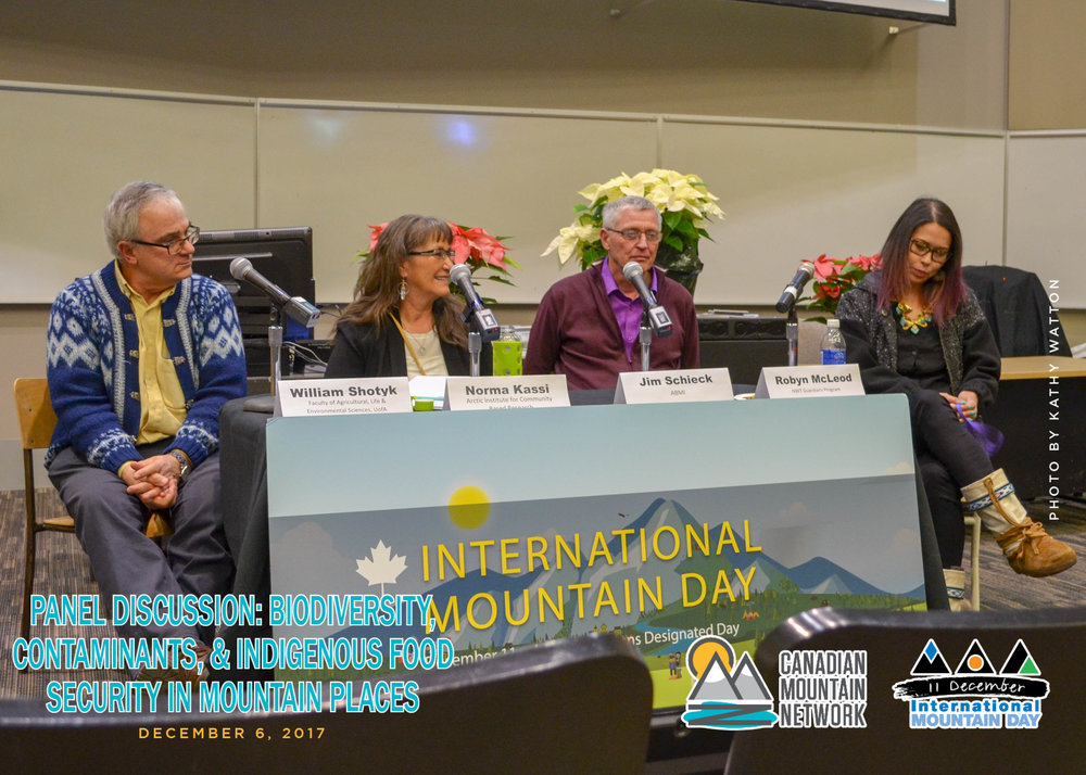 MountainFestival2017_Panel_KW-18.jpg