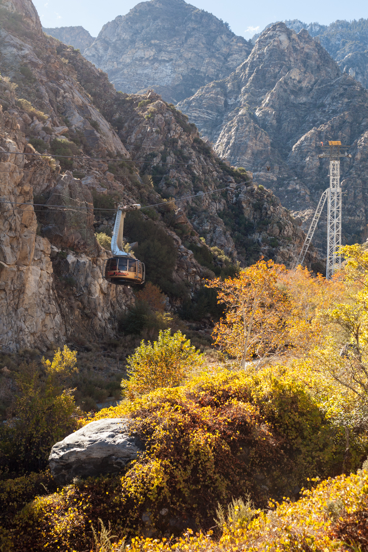 Palm Springs-10.jpg