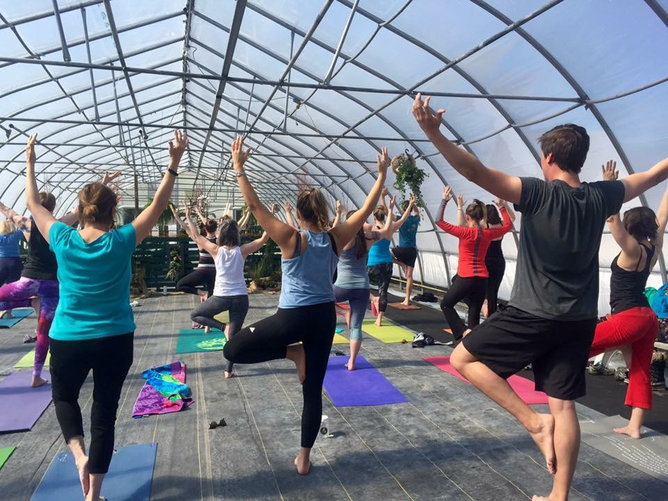 Murray's Garden Centre  We host our Greenhouse Yoga classes at Murray's Garden Centre on Portugal Cove Road. This beautiful space is the perfect location for a zen experience! Learn more about Murray's at  murraysgardens.com