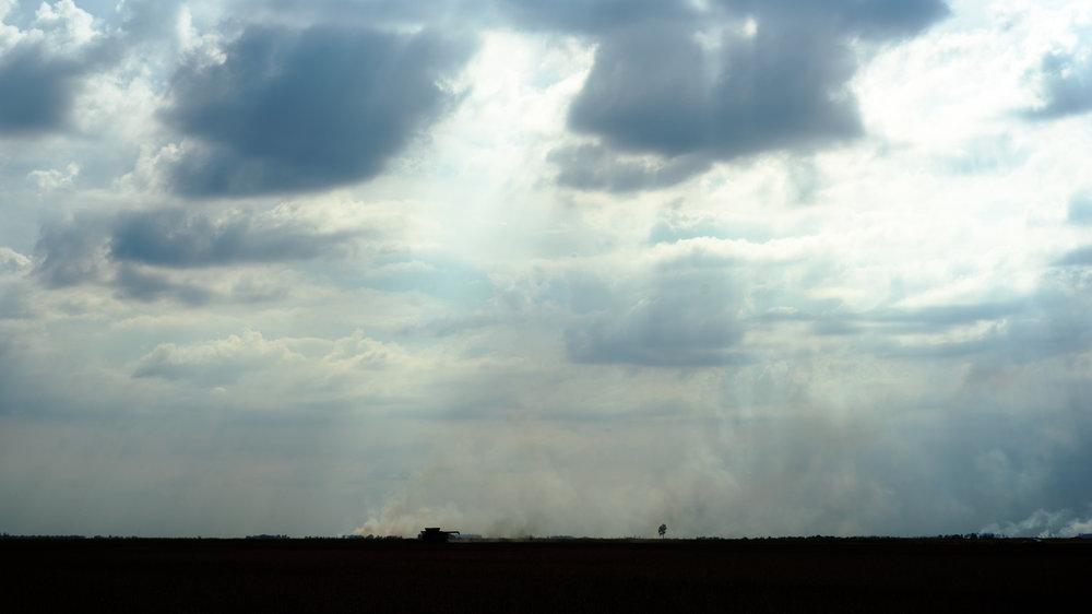 Horizon, near Osceola, AR, 2017