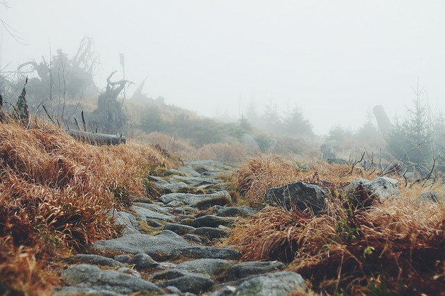 landscape-691150_640.jpg