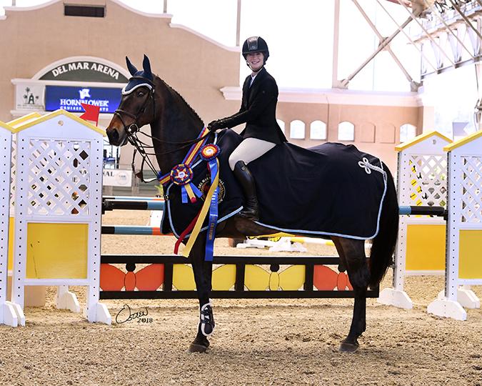 Photo: Osteen 2018 / Del Mar National Horse Show