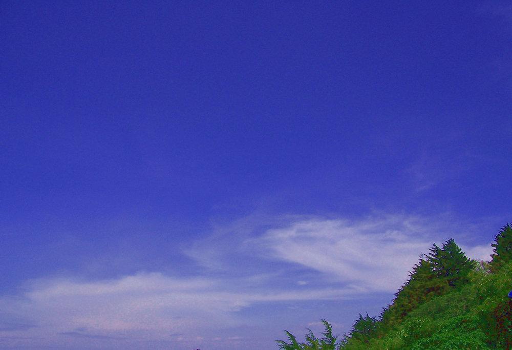 trees-and-sky-1178798-1278x872.jpg