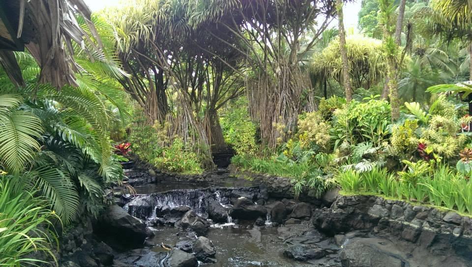 Hot Springs at Tabocon Resort.jpg