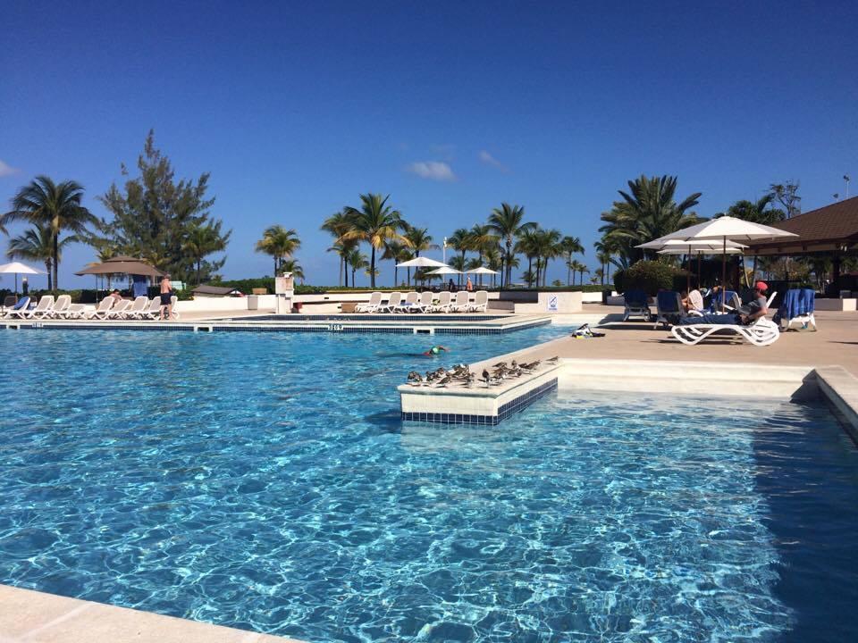 pool daytime.jpg