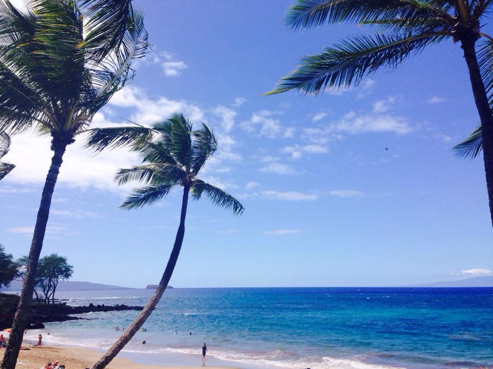 Maui 2014.jpg
