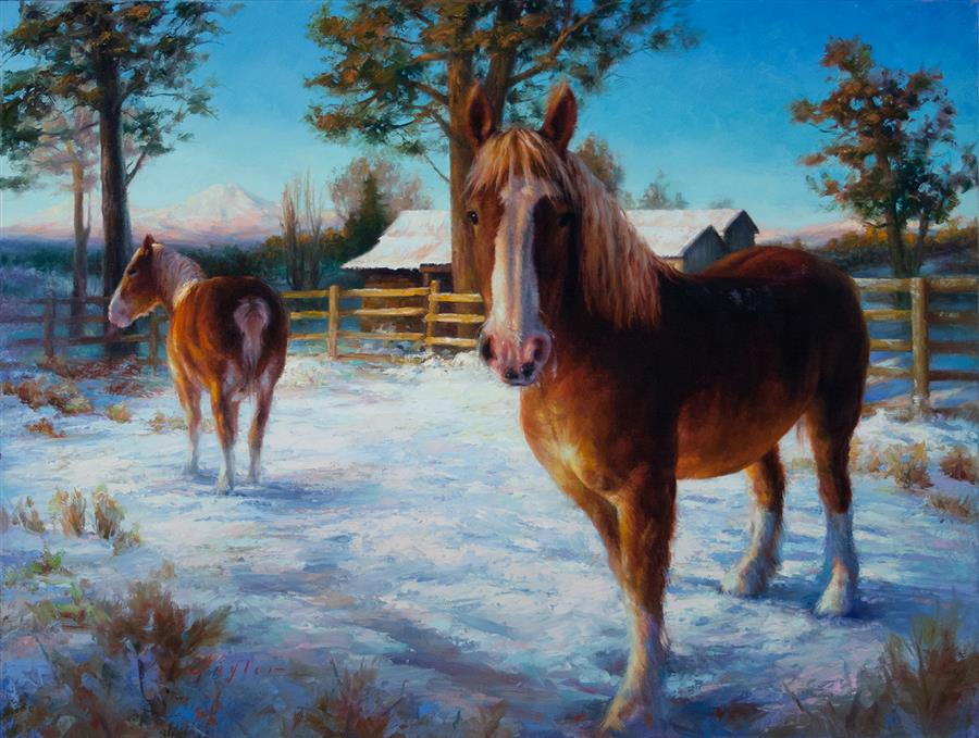 "Soul Portrait of a Belgian Draft Horse (30"" x 40"") by Katherine Taylor, oil painting"