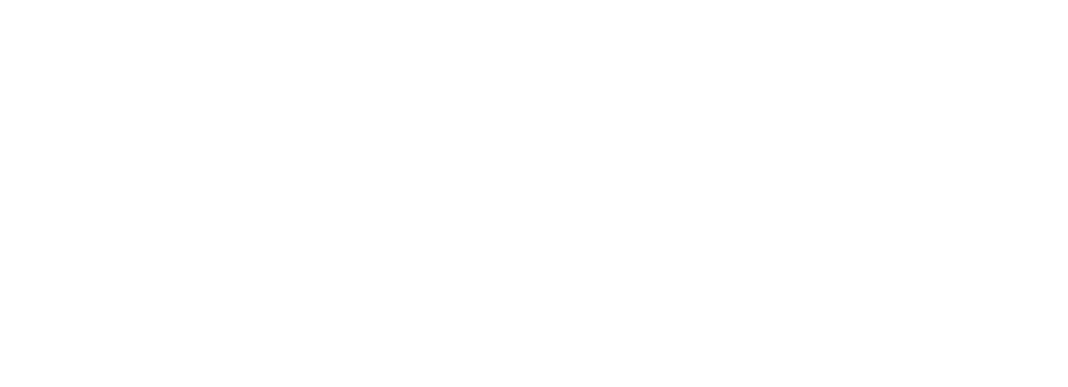 Stacey Litz Tax, LLC