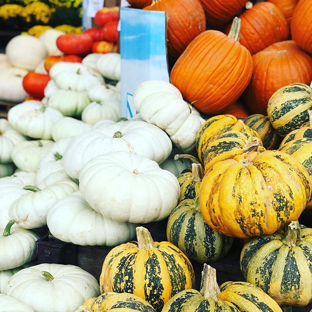 Nothing says it's Fall more than pumpkins, mums and squash outside of Whole Foods!  I love this time of year!  So thankful I live in such a beautiful place that blesses us with seasons! Seasons represent change and change is good for us! 🍂 . . #fall #pumpkins #mums #squash #wholefoods #crispair #seasons #colorado #football #changeisgood #newseason #football