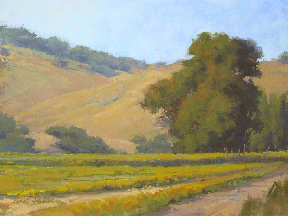 Valley Vineyard, pastel, 12x16  SOLD