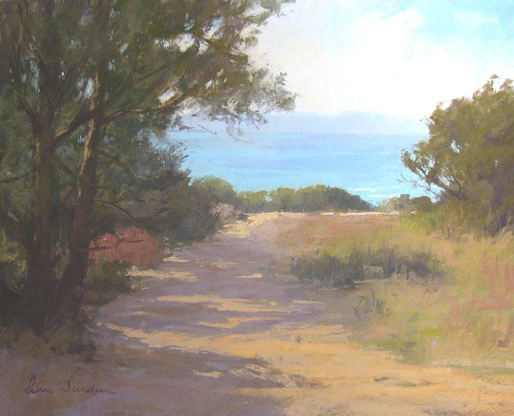 Douglas Preserve, pastel, 16x20