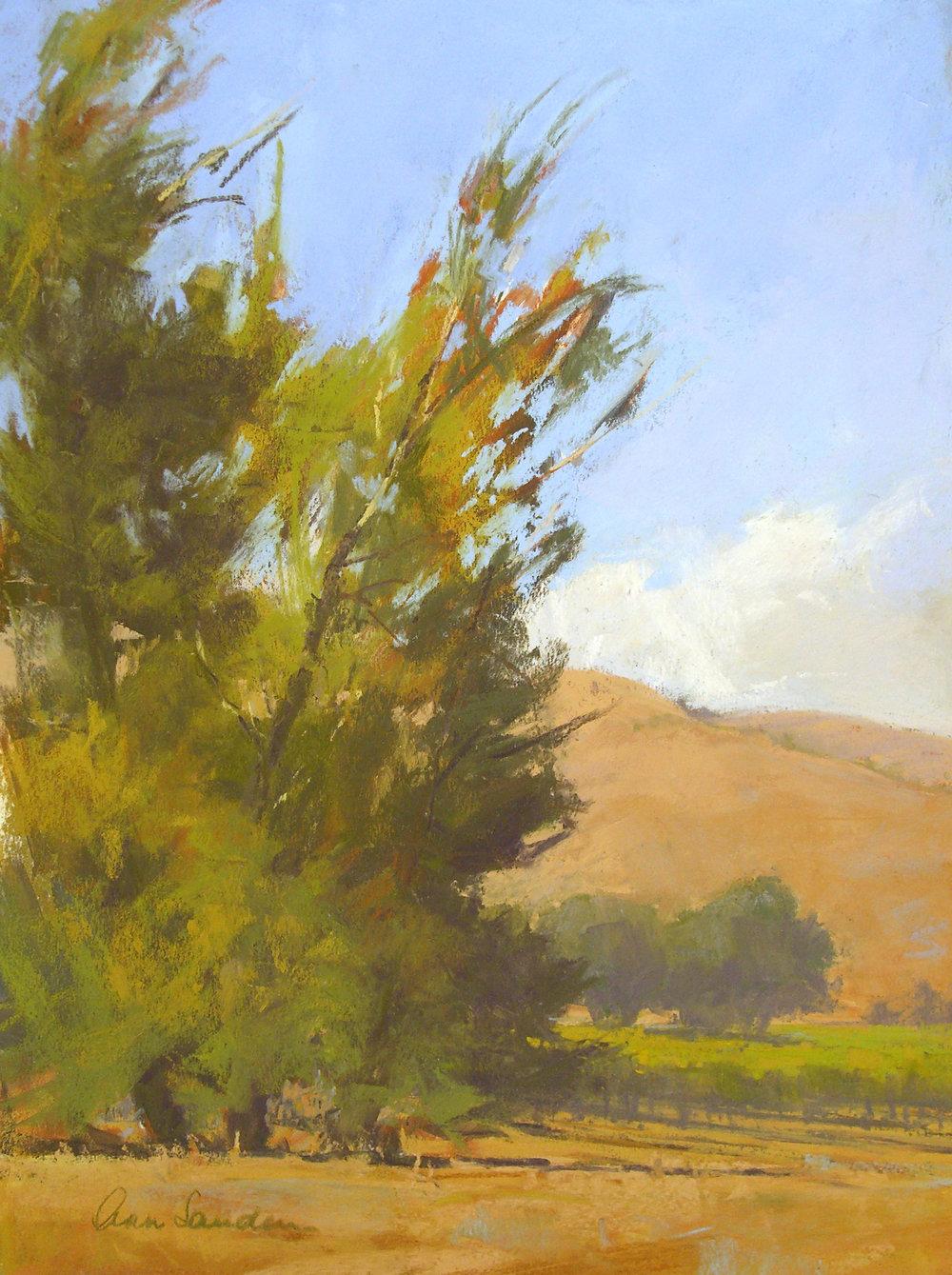 Foxen Canyon, pastel, 16x12