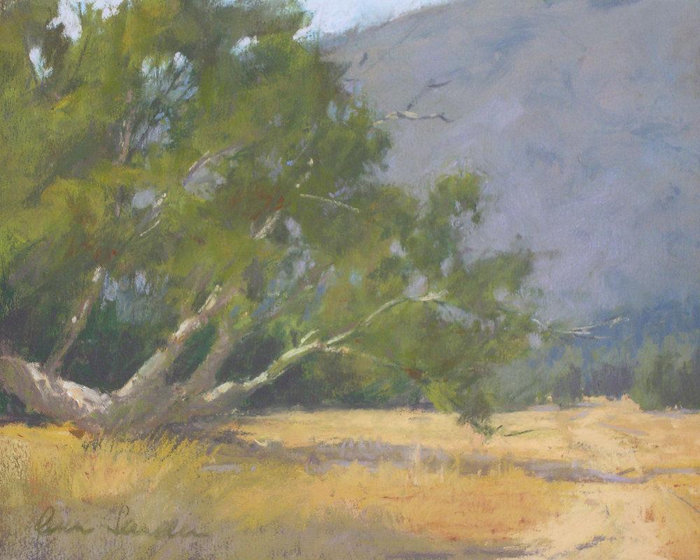 Figueroa Mountain Road, pastel, 8x10