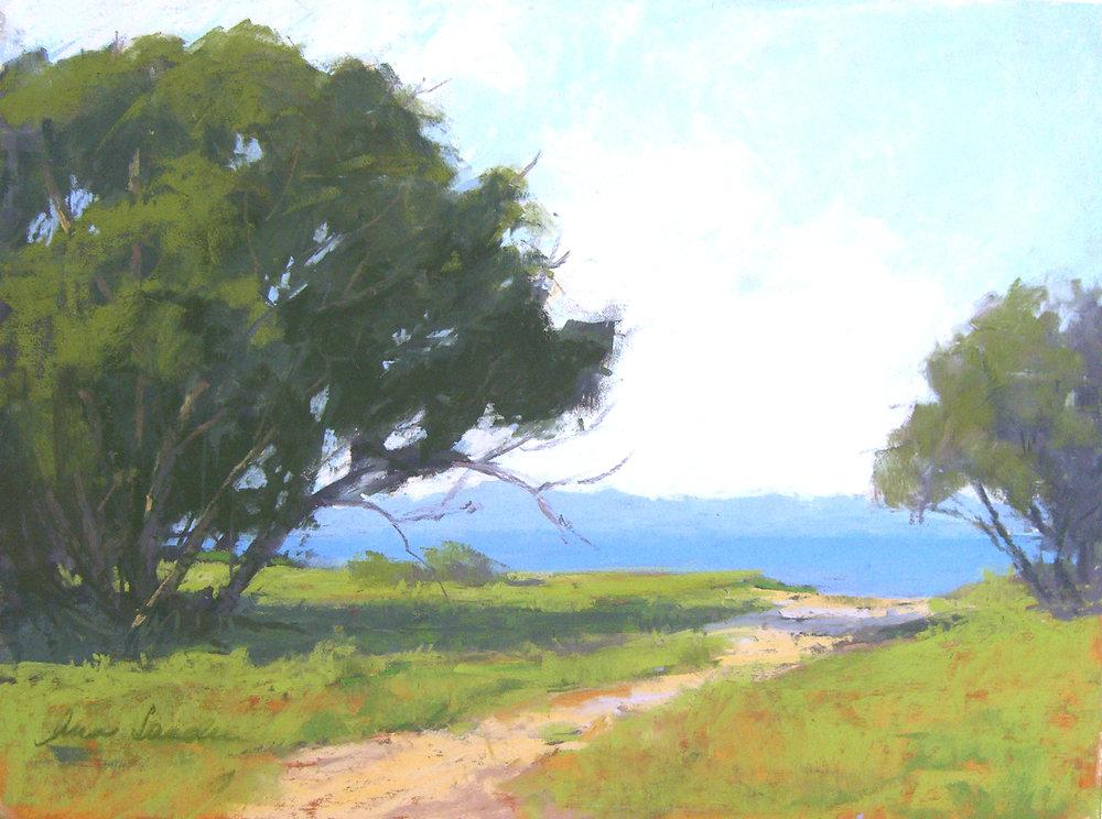Ocean Path, pastel, 12x16
