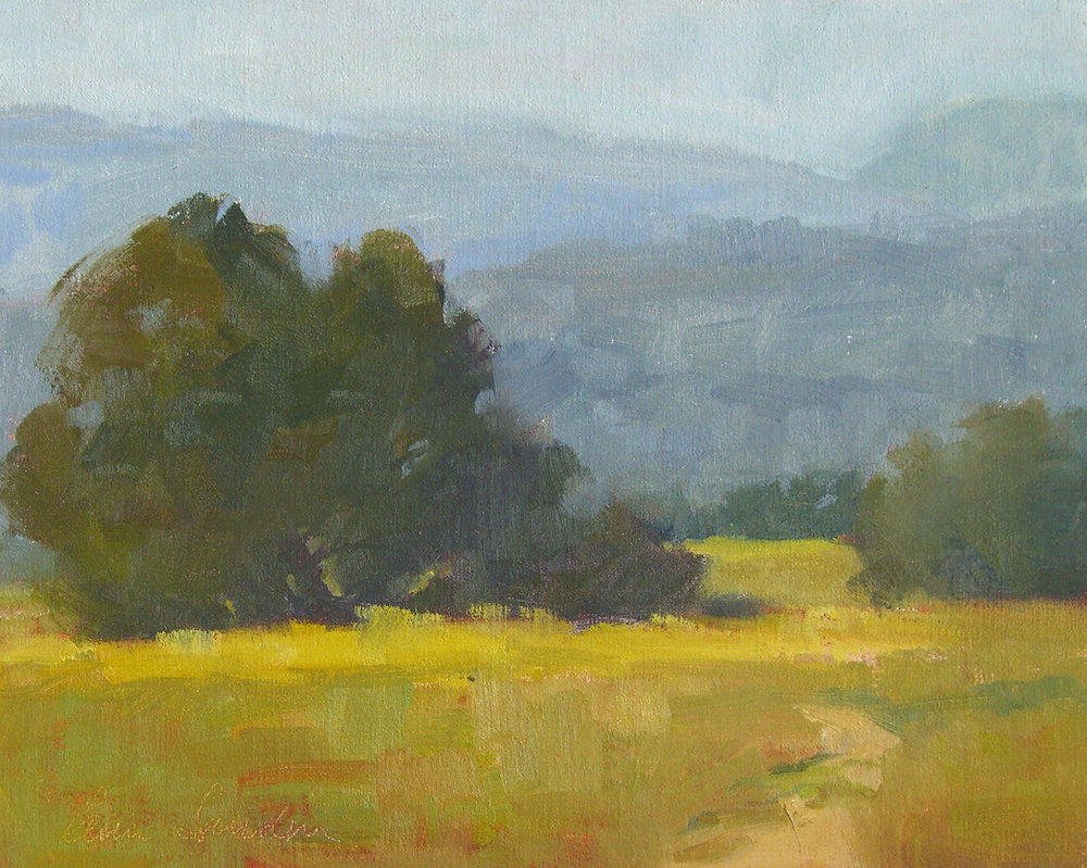 San Marcos Foothills, oil, 8x10