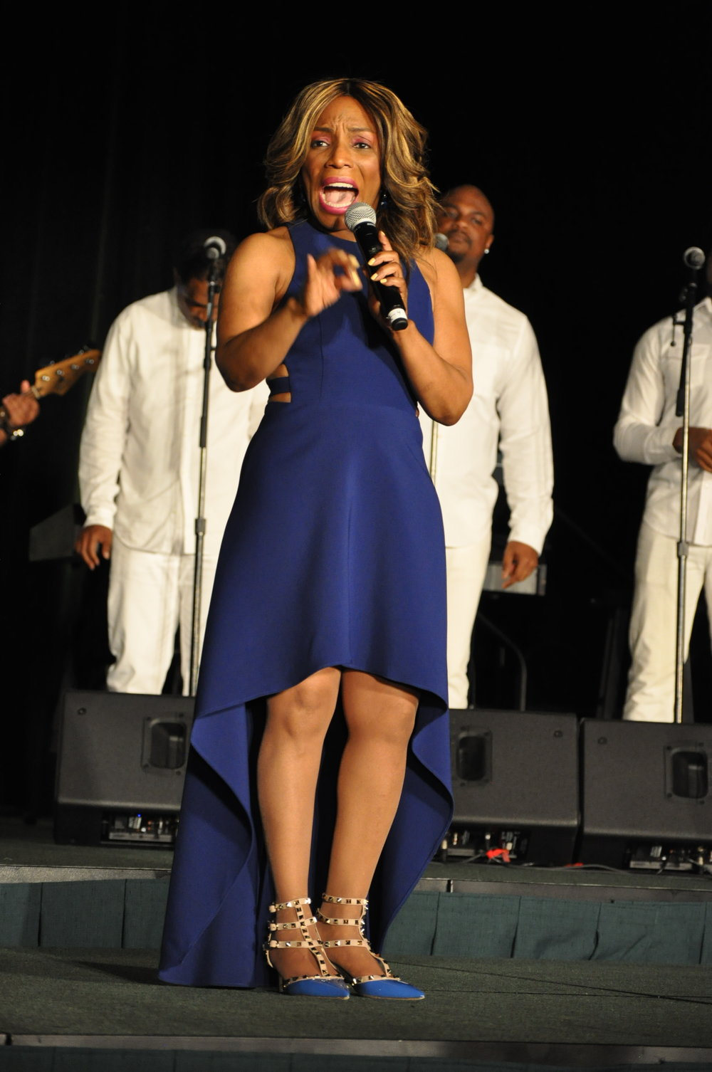 Grammy award wining recordig artist and actress Stephanie Mills performed at the gala.