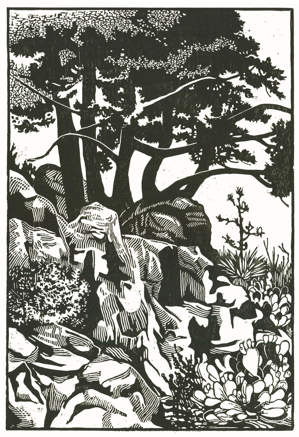 Max-Karl Winkler, Shaded Rocks / Courtesy BlackRock Center for the Arts