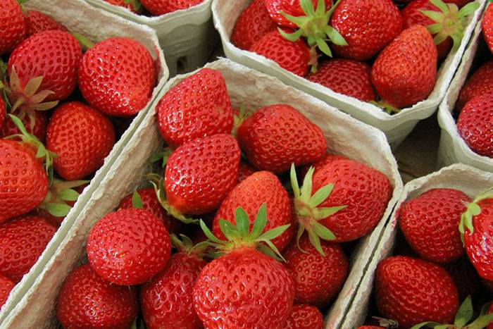 Believe it or not, eating strawberries may be better at whitening your teeth than any synthetic chemical compound. Credit: Richard Hemmer, FlickrCC