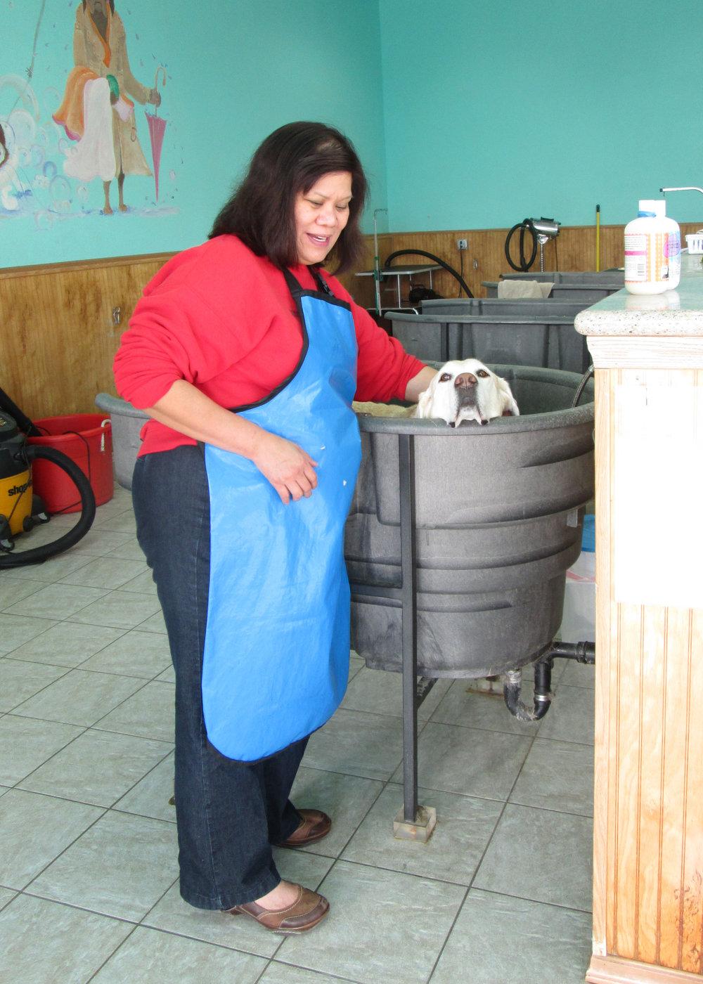 Barbara learning to bathe Walnut