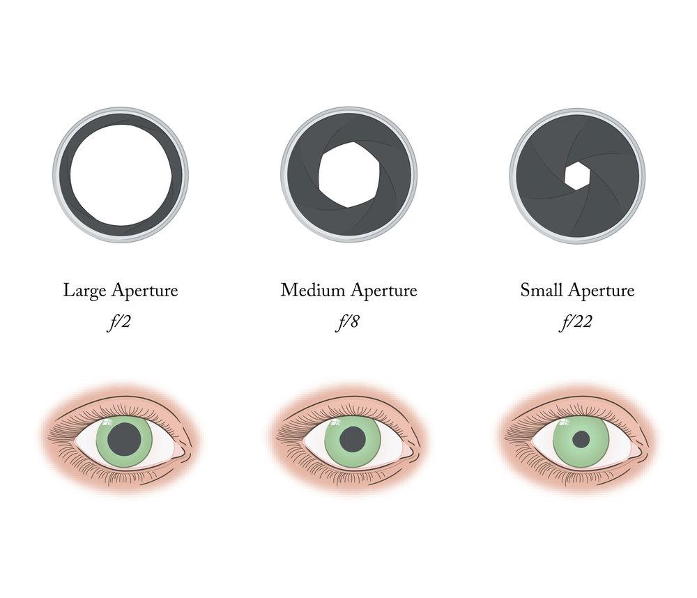 aperature-pupil.jpg