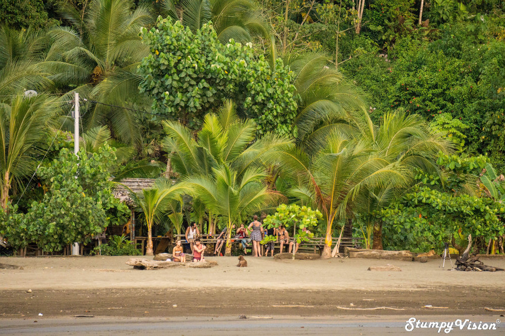 Want to stay where the beach meets the jungle? Backpacker vibes.