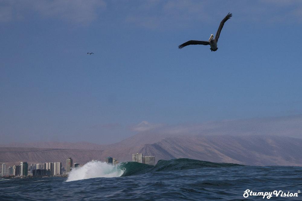 Chile Teahupoʻo Surf Blog 17.jpg