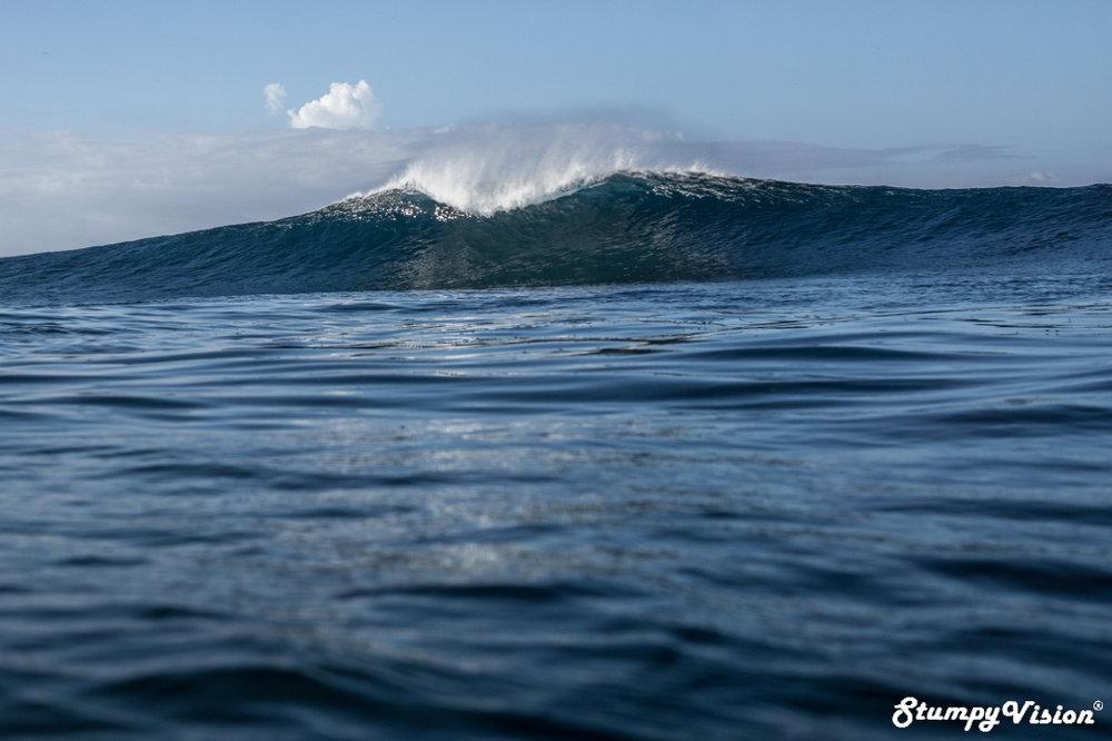 Big wave Galápagos