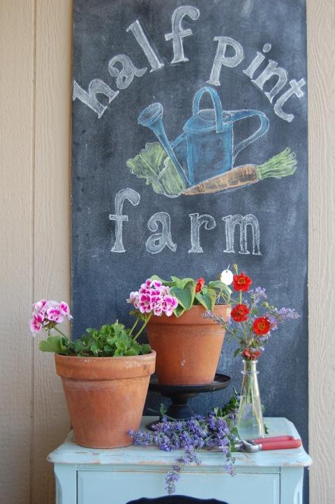 half-pint-fun-size-farm-1.jpg