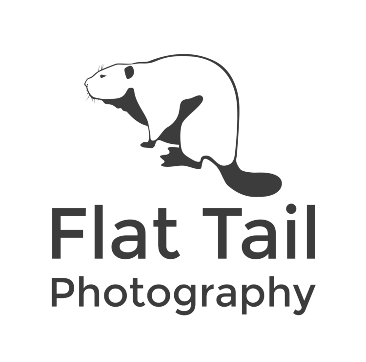 Flat Tail Photography