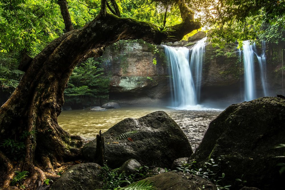 waterfalls and trees in Khao Yai National Park, Thailand