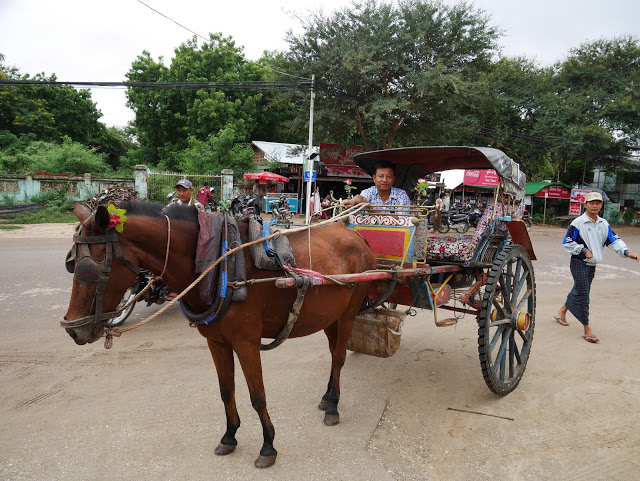 a horse and driver with a cart for tourists in Bagan myanmar