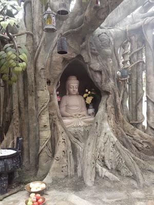 a Buddha statue inside a sacred