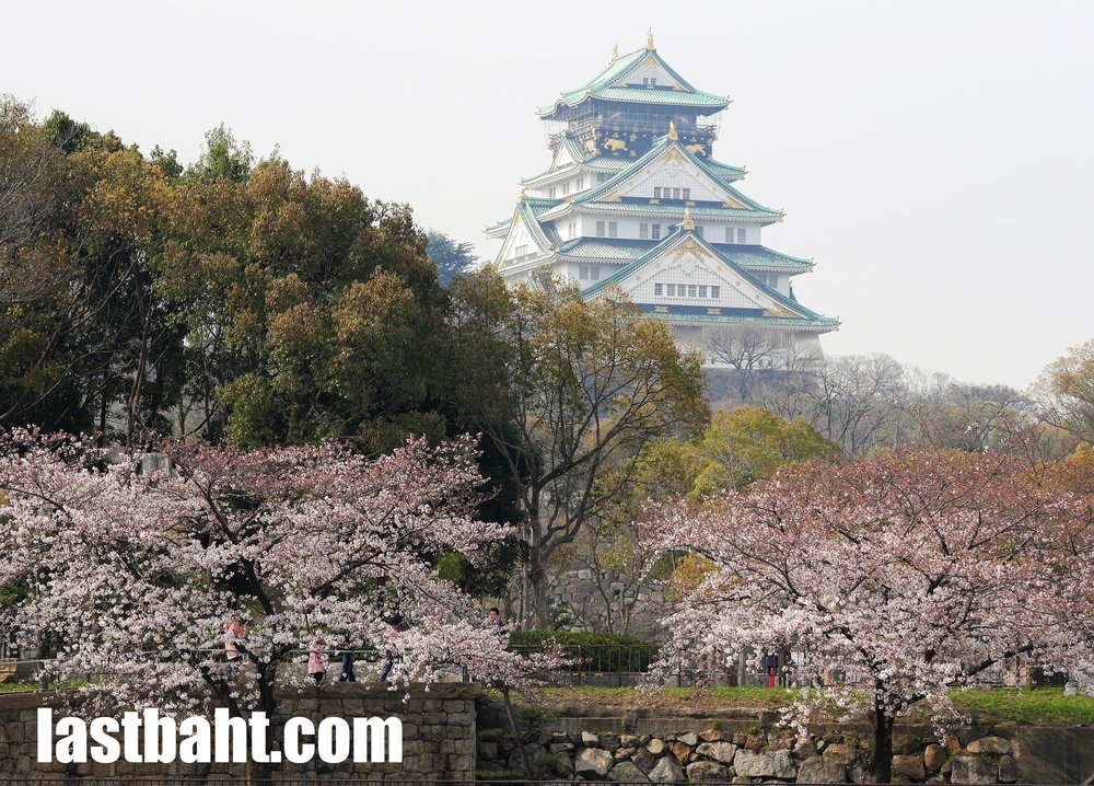 Osaka Castle surrounded by cherry blossoms, Japan