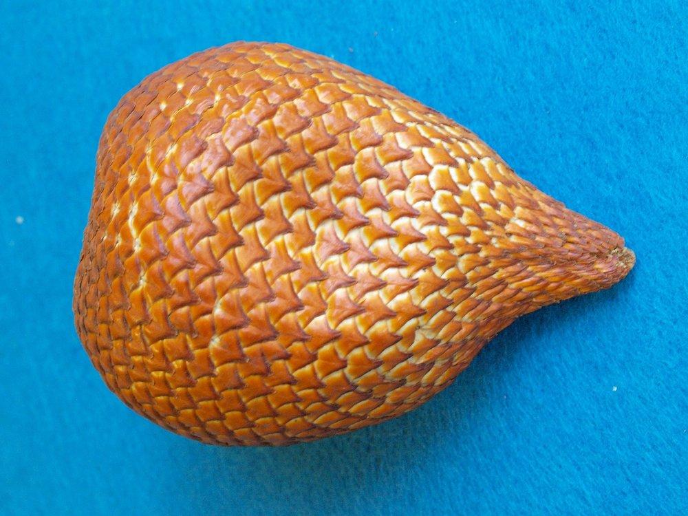 Thai snakefruit
