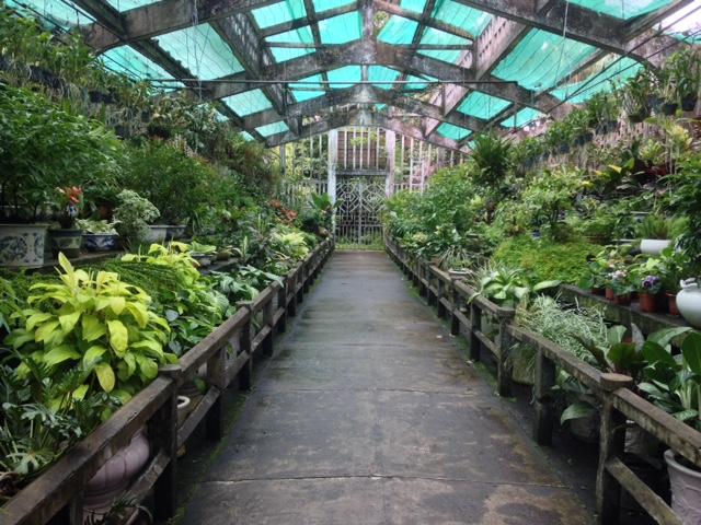 greenhouse at the Saigon Botanical Gardens