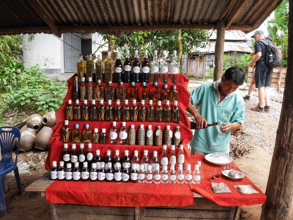 snake whisky at the Whisky Village near the Pak Ou Caves, Luang Prabang, Laos