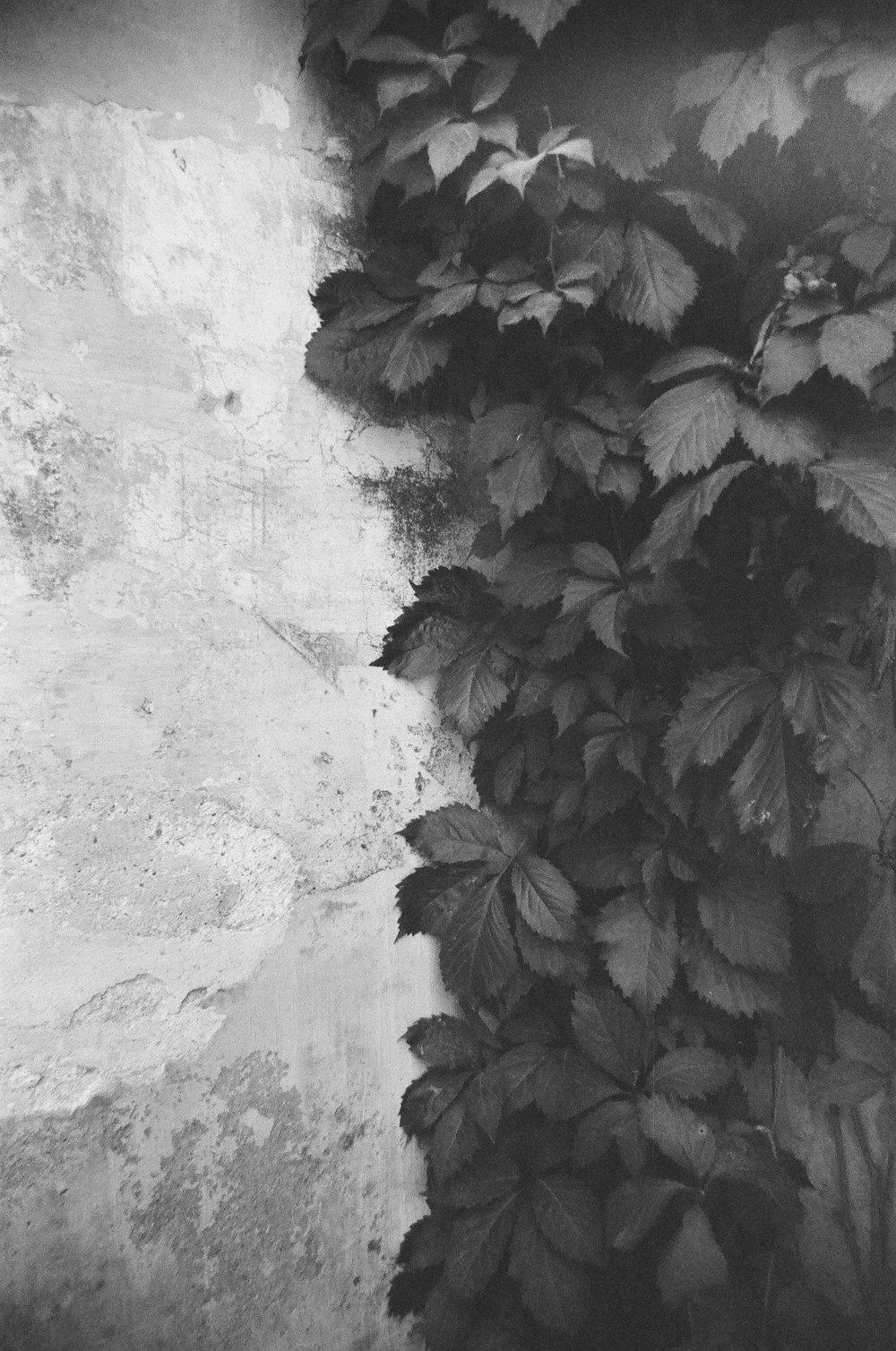 Granada_11.jpg
