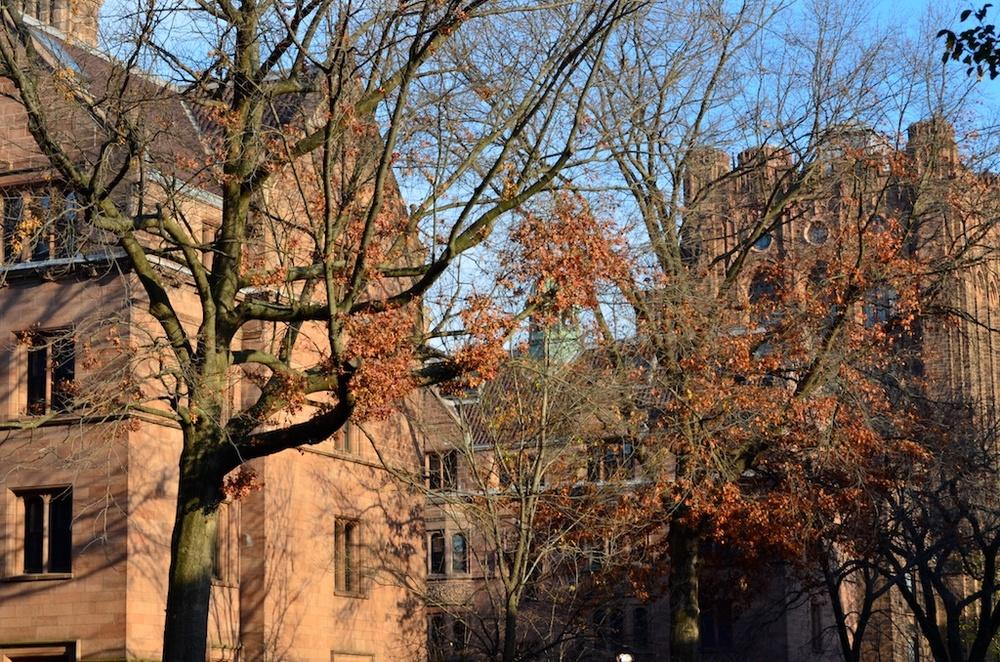 2011-11-20 at 15-51-06.jpg
